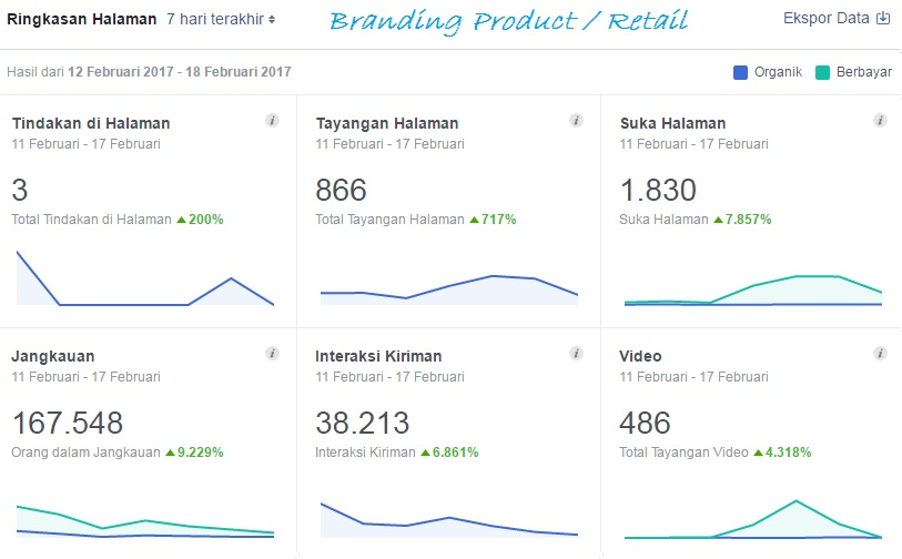 fb insight retail type page