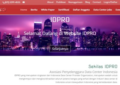 idpro screen shoot