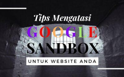8 Cara Mengatasi Google Sandbox Untuk Website Bisnis Anda